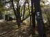 Kéktúra pecsételőhely a Sikárosi erdészház kapuja mellett