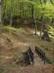 Gyalogoshíd az Öreg-vágás-völgy vízfolyása felett