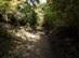 Meredek gyalogút vezet le a Fellegvártól Visegrádra
