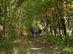 A Békás-rét és Kóspallag között a Sűrűség nevő erdőrészen