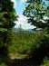 Visszatekintés a Nagy-Kő-hegy oldalából Nógrád várára