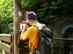 Magyarkút - Kéktúra pecsételőhely az Irma-forrás mellett