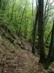 Sziklás, suvadásos ösvényen a Naszály oldalában