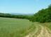 Megművelt földek peremén - A távolban még látszik a Börzsöny