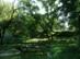 Alsópetény - A Gyurcsányi-Prónay kastély parkja