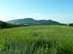 Jól látszik a Berceli-hegy a Szanda-hegy oldalából