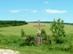 Útszéli fakereszt Cserhátsurány határában