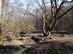 Magyarkút - Palló a Keskeny-bükki-patak felett