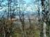 Kilátás a fák között észak felé