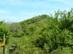 A Selyem-rétről pillantjuk meg magunk előtt az Oroszlánvárat