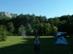 Dúsfüvű rétek a Gyári-tó felett 2.