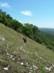 A Vörös-kő-bérc meredeken leszakadó déli oldalában