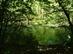 A Kis-Mohos vízzel elöntött területe 2.