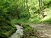 A Tohonya-patak völgye nyáron 1.