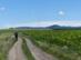Vándorlás a hosszú mezei úton