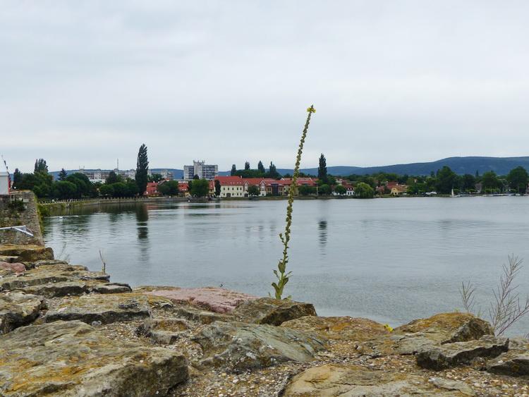 Tata - Kilátás a vártól az Öreg-tóra