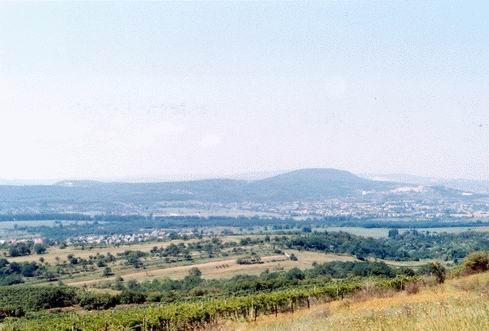 Kilátás a Dorogi-medencére a Kétágú-hegy oldalából