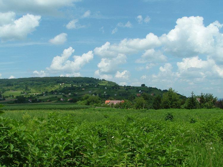 The Kő orra Hill. We will climb onto its shoulder