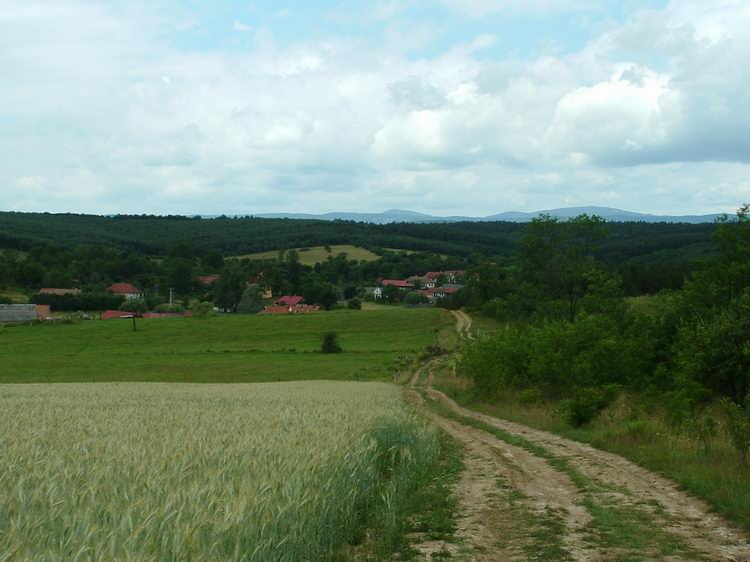 The view of Tornabarakony from the hill