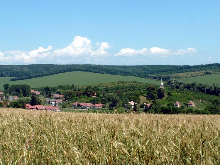 This is already Abaújszolnok village taken from the upper edge of the cultivated field