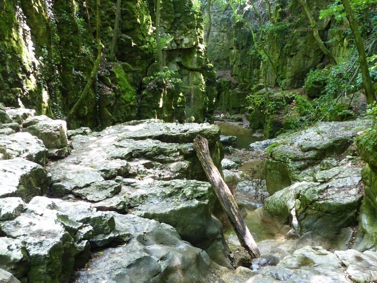 The gorge of Gaja Creek